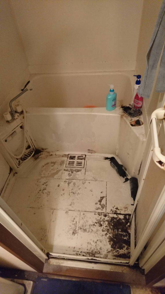 不用品回収_岡山市春日町_清掃前の浴室