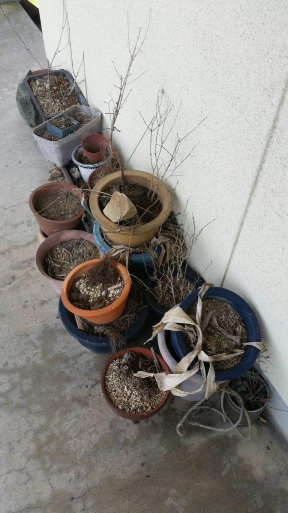 岡山市南区浦安_不用品回収事例_外壁のプランター